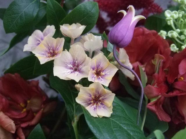 オークリーフ(還暦のお祝い花束)_f0049672_12255863.jpg
