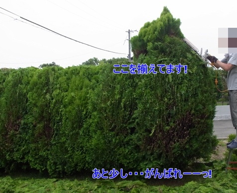 c0205806_1856799.jpg