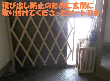 f0121712_10241473.jpg