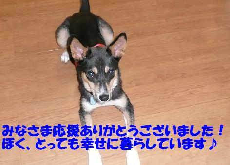 f0121712_1028190.jpg