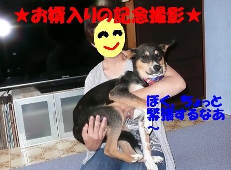 f0121712_1075323.jpg