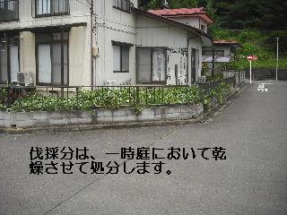 f0031037_21542868.jpg