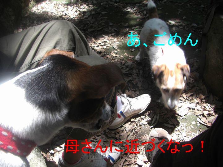 f0053952_2254221.jpg