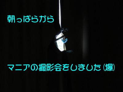 b0158061_20493654.jpg