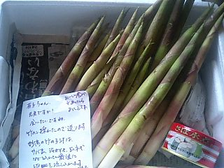 懐かしの竹の子汁_e0159969_18244781.jpg