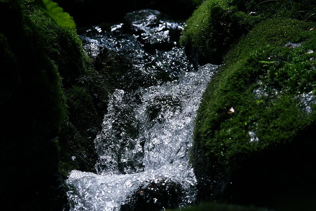 pure water_b0116600_0142696.jpg