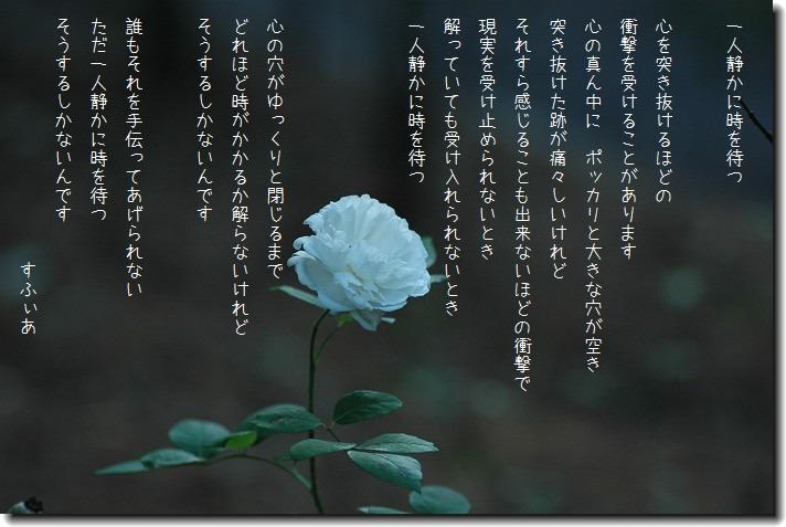 b0152416_1844819.jpg