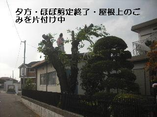 f0031037_2004111.jpg