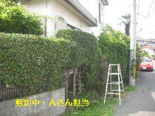 f0031037_20101875.jpg