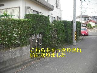f0031037_20105880.jpg