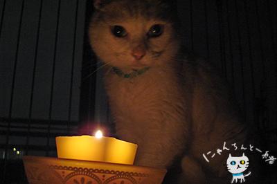 キャンドルナイト最終日_e0031853_13291466.jpg