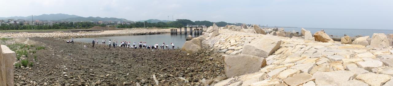 下荘小学校5年生学習サポート in せんなん里海公園_c0108460_17503760.jpg
