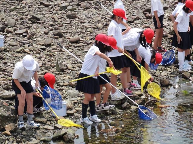 下荘小学校5年生学習サポート in せんなん里海公園_c0108460_17512645.jpg