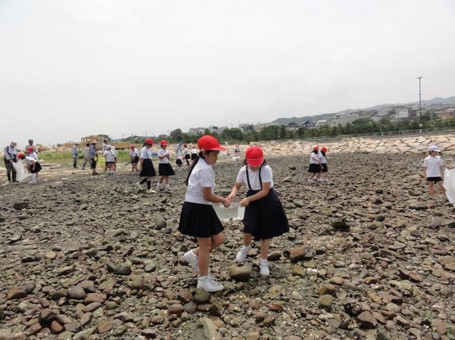 下荘小学校5年生学習サポート in せんなん里海公園_c0108460_1752474.jpg