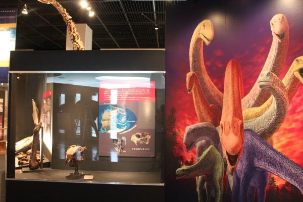 恐竜博物館 開館10周年記念特別展開催!_f0229508_16381842.jpg