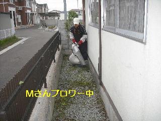 f0031037_20383719.jpg