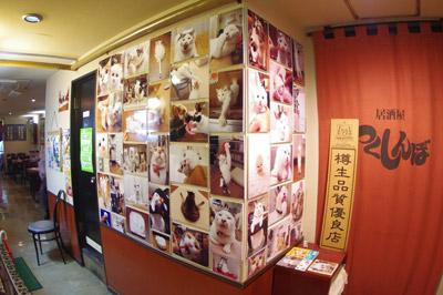 今年もまた「つくしんぼ」で写真展示始まりました。_a0028451_2003171.jpg