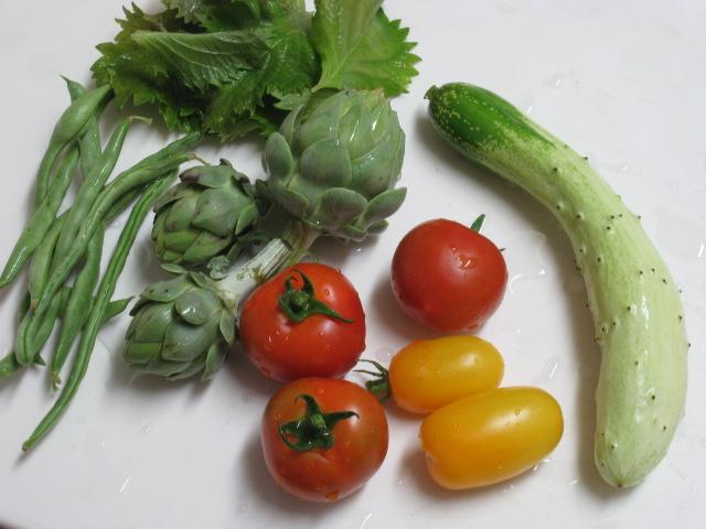 収穫~~_e0121558_21463188.jpg