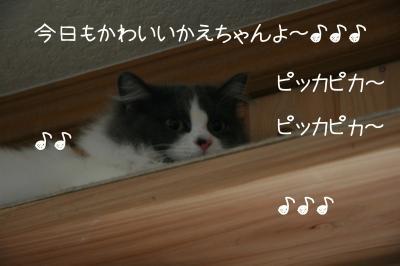 f0226561_15241357.jpg