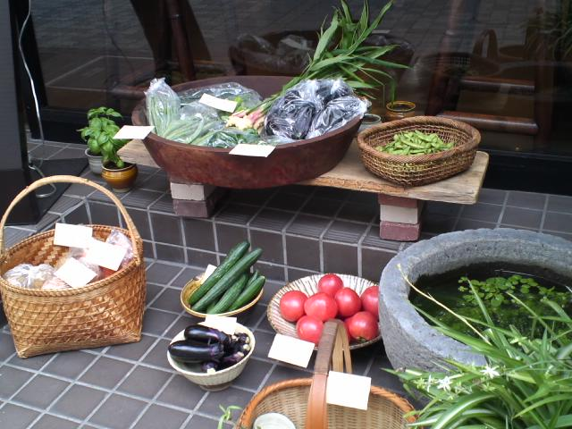 朝採り野菜_f0233163_1124466.jpg