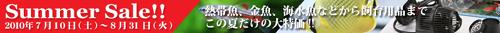 c0165807_21541577.jpg