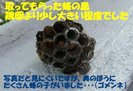 f0121712_15101523.jpg