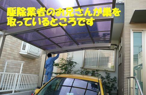 f0121712_1544837.jpg