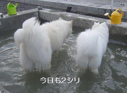 f0213924_2247548.jpg