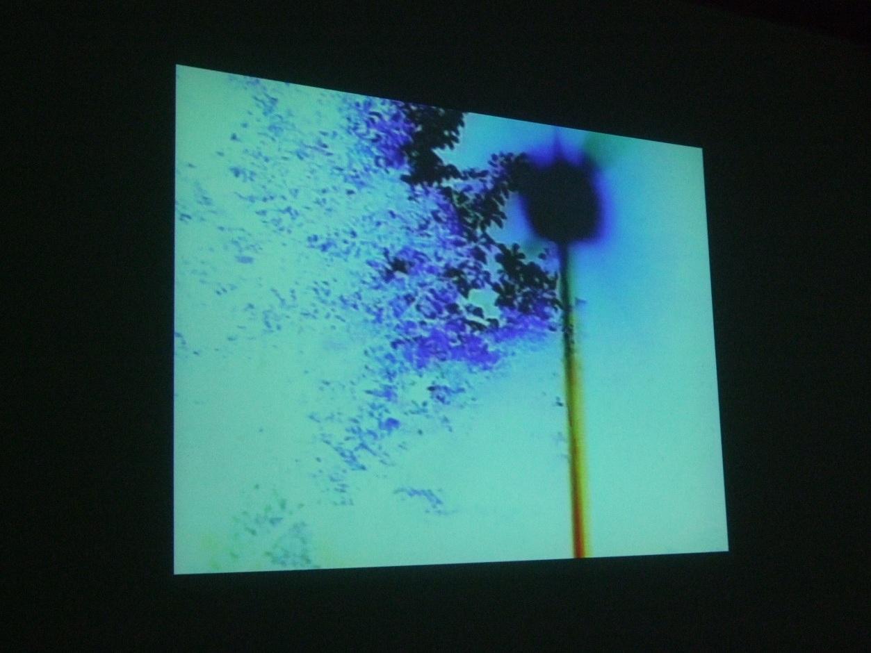 1291) 市民ギャラリー 「七月展 (道教育大自主作品展)」 7月7日(水)~7月11日(日)  _f0126829_16291334.jpg