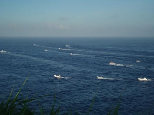 7月10日  カジキ釣り大会♪♪_b0158746_1741456.jpg