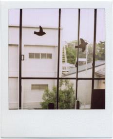 京都に行ってきました_c0200002_22322051.jpg