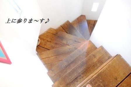 d0104926_753041.jpg