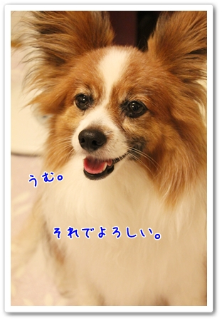 d0013149_026142.jpg