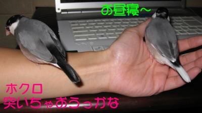 b0158061_210131.jpg