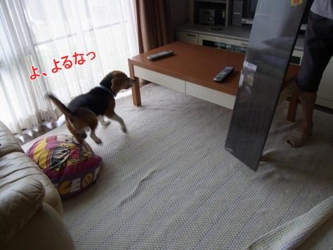 c0205806_161714100.jpg