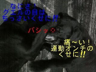 f0148927_15381064.jpg