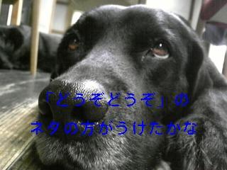 f0148927_15465347.jpg