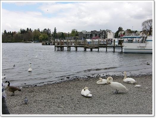 湖水地方へ~Ⅱ・ウインダミア湖周辺_c0079828_104695.jpg