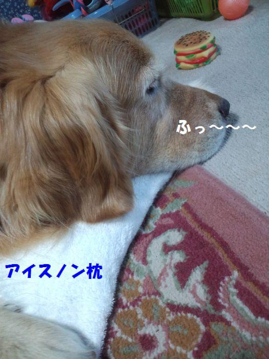 b0127531_18104067.jpg