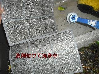 f0031037_220690.jpg