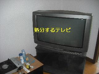 f0031037_229155.jpg