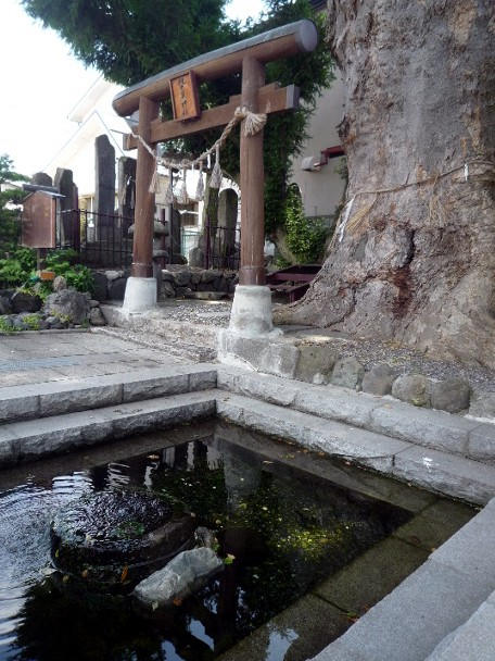 松本安曇野住宅建築展_c0112447_954124.jpg