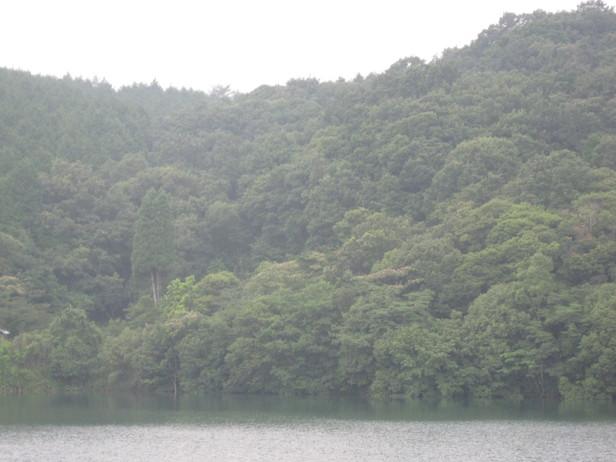 GreenGreenVillage「日田」へ~_a0125419_10374245.jpg