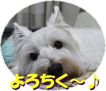 f0084422_1834251.jpg