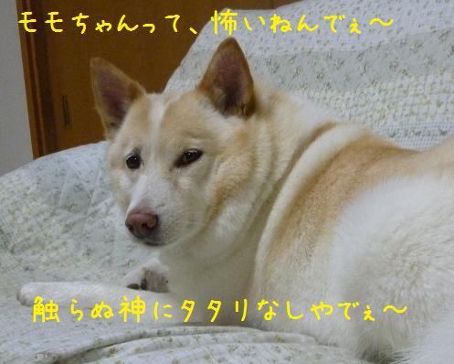 b0138430_20311676.jpg
