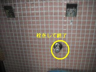 トイレ・白蟻緊急工事_f0031037_21194677.jpg