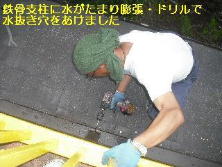 トイレ・白蟻緊急工事_f0031037_21205168.jpg