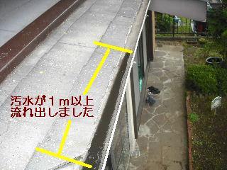 トイレ・白蟻緊急工事_f0031037_21211560.jpg