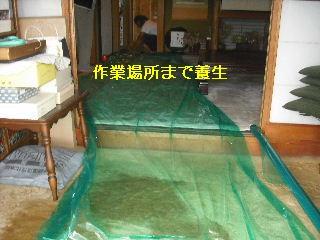 トイレ・白蟻緊急工事_f0031037_21253441.jpg