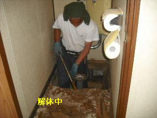 トイレ・白蟻緊急工事_f0031037_21283137.jpg